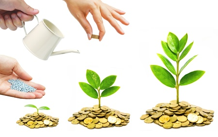 desarrollo sustentable: Manos que ayudan a la plantaci�n de �rboles que crecen en las monedas juntos - La construcci�n de negocios con la RSC y la �tica