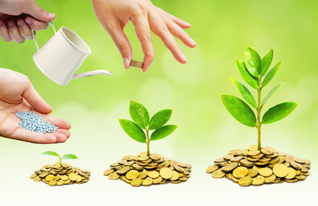 growing together: Hands helping planting trees growing on coins together - Building business with csr and ethics