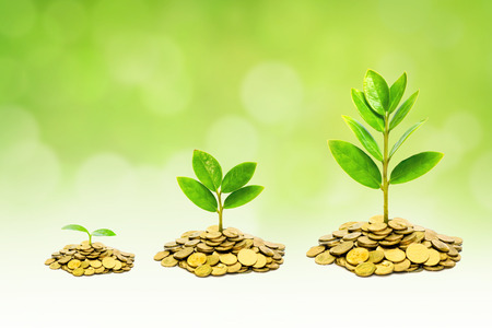 trees growing on piles of golden coins  business with csr practice Stock Photo