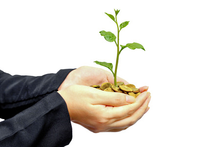 csr: manos sosteniendo un �rbol que crece en monedas de oro con el fondo verde - negocio con la pr�ctica de RSC