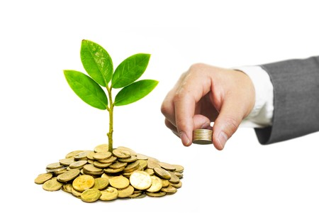 environmental concern: Business with csr practice  Business investment with environmental concern