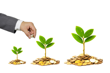 hand of a businessman giving coins to trees growing on golden coins - Business growth and wealth with csr concern