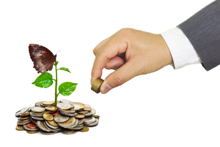 business concern: hand of a businessman giving coins to trees growing on golden coins with a butterfly - Business growth and wealth with csr concern Stock Photo