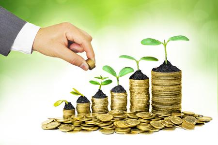 prosperidad: Manos del hombre de negocios dando monedas a los árboles que crecen en las monedas en la secuencia de la germinación de negocios con la práctica de la RSC Foto de archivo
