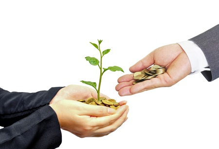 Hands of businessmen giving coins to trees growing on coins - Business growth with csr practice Foto de archivo