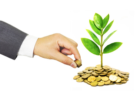 golden coins: hands of a businessman giving coins to trees growing on golden coins - Business growth and wealth with csr concern