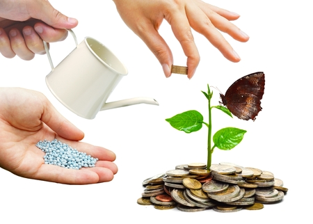bucket of money: Hands helping planting trees growing on coins together - Building business with csr and ethics