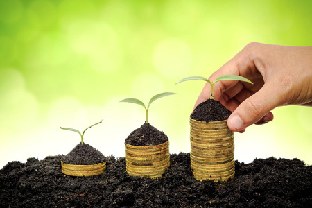 environmental concern: Hand holding stack of golden coins with young green trees  Business with csr practice and environmental concern Stock Photo