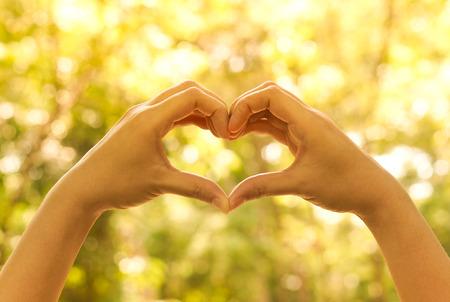 Hände bilden eine Herzform um einen großen Baum zu schützen Baum und Liebe der Natur Standard-Bild
