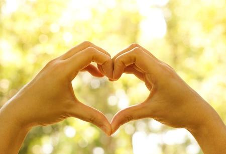 Hände bilden eine Herzform um einen großen Baum zu schützen Baum und Liebe der Natur Lizenzfreie Bilder