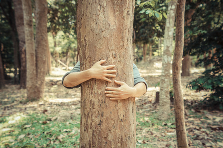 save tree: man hugging a big tree  love nature concept Stock Photo