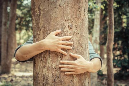 hug: man hugging a big tree  love nature concept Stock Photo