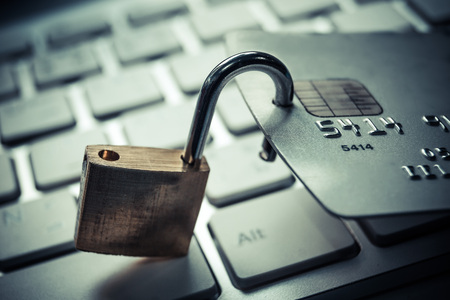 data theft: credit card data security  credit card data theft