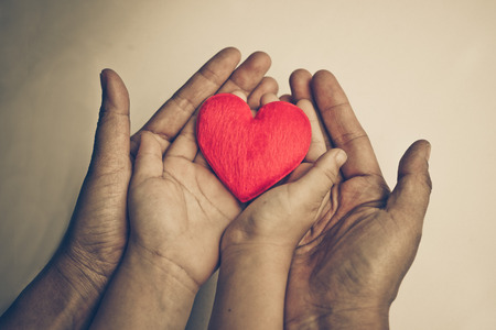 old hand of the elderly and a young hand of a baby holding a red heart together Standard-Bild