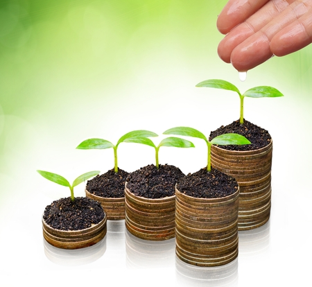 csr: hand watering trees on coins - Business growth with csr practice