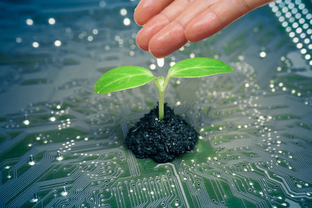 hand watering a tree growing on a computer circuit board  green it  green computing  csr  it ethics Stockfoto