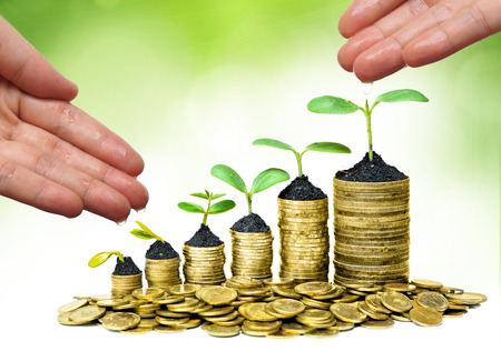 hands watering trees on coins  Business growth with csr practice photo