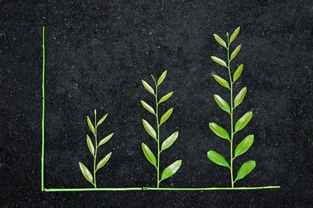 sembrando un arbol: �rbol dispuesto como un gr�fico verde sobre fondo de suelo  CSR  desarrollo sostenible  plantar un �rbol  responsabilidad social corporativa Foto de archivo