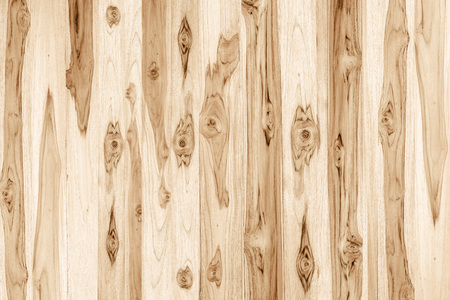 wood panel: wood texture background Stock Photo
