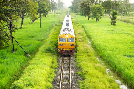 diesel locomotives: Old train on railway track with green plants along both side Stock Photo