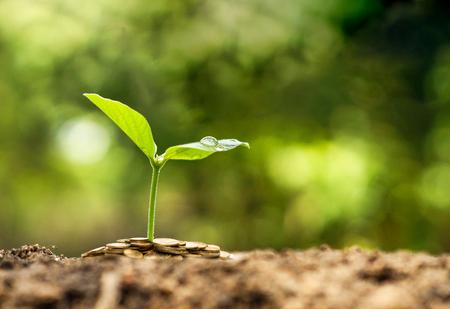 Groene bedrijven  Stockfoto