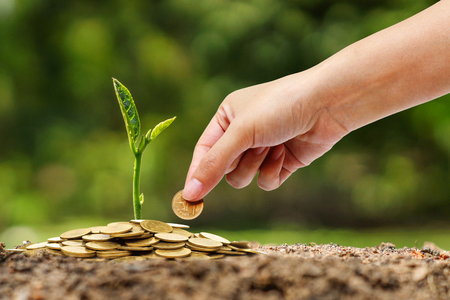 to plant: business with csr practice Stock Photo
