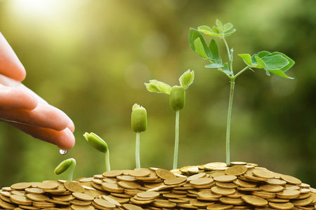 plant seed: business with csr practice Stock Photo