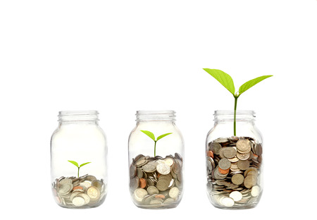 Business growth with csr practice  Green investment concept Stock Photo