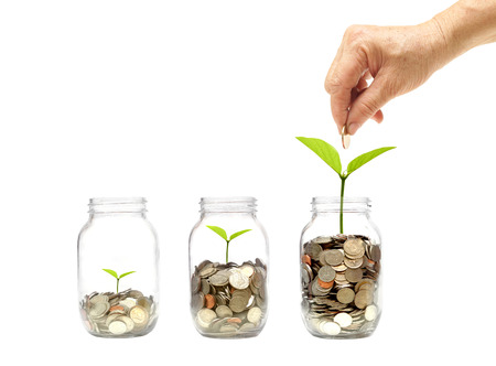 old female hand putting a golden coin into a bottle with a green plant growing on coins