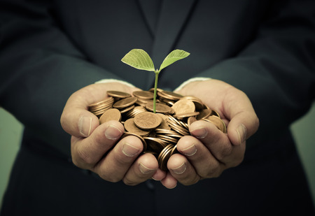 preserve: hands of business man holding a tree growing on golden coins - business investment with csr practice Stock Photo