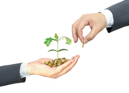 business concern: Business growth with csr practice  Business investment with environmental concern Stock Photo