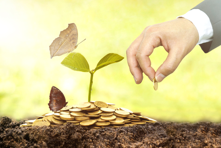 environmental concern: Business growth with csr practice  Business investment with environmental concern Stock Photo