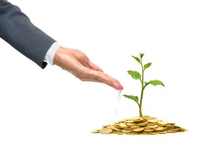 gobierno corporativo: El crecimiento del negocio con una inversión práctica  negocio RSE con preocupación medioambiental