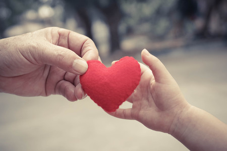 old hand of the elderly and a young hand of a baby holding a red heart together Stockfoto