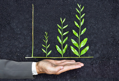 corporate social: Hand of a businessman holding tree arranged as a green graph on soil background  csr  sustainable development  corporate social responsibility Stock Photo
