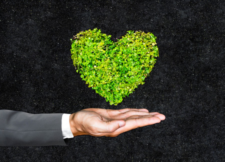 environmental concern: hands of businessman holding green heart shaped tree  business with environmental concern  csr  Go green  Corporate Social Responsibility  Sustainable development Stock Photo