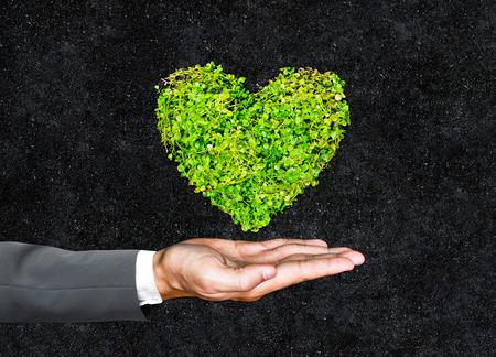 desarrollo sostenible: manos de hombre de negocios que llevan a cabo en forma de corazón del verde del árbol  de negocios con el medio ambiente preocupación  CSR  Ir responsabilidad social corporativa   Desarrollo sostenible verde Foto de archivo
