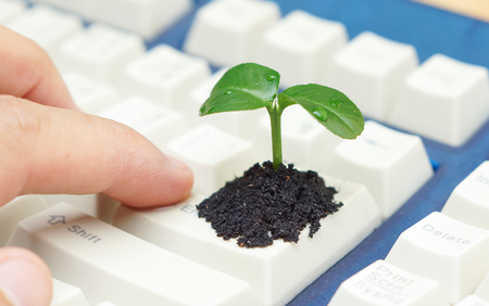 green computing: finger pressing enter button with a tree growing on a computer keyboard  green it  green computing  csr  it ethics