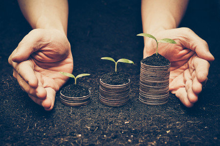 hands holding trees growing on coins / csr / sustainable development / economic growth / trees growing on stack of coins / Business with environmental concern Stockfoto