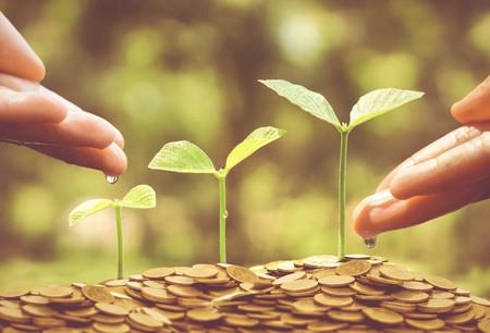 preocupacion: Negocio con la pr�ctica RSE  negocios con el cuidado del medio ambiente y la preocupaci�n