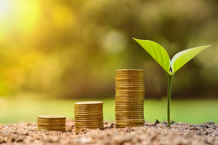 financial growth: Business with csr practice