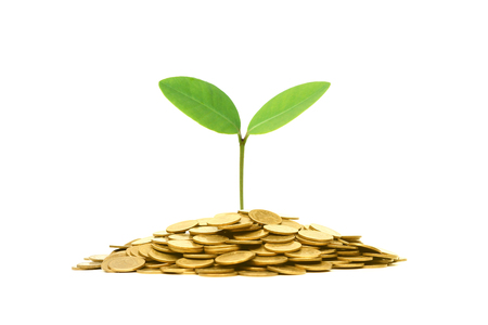 Green business and investment  Business with csr and environmental concern Stock Photo