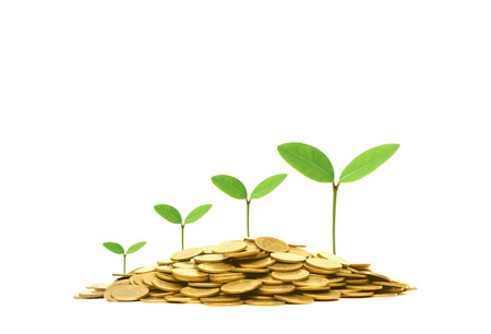 concern: Green business and investment  Business with csr and environmental concern Stock Photo