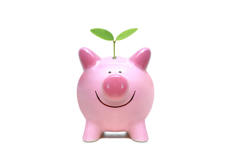 csr: A green piggy bank with a green plant  Green saving concept  Economic growth with environmental concern