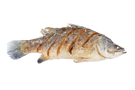 calcarifer: Fried white perch fish isolated
