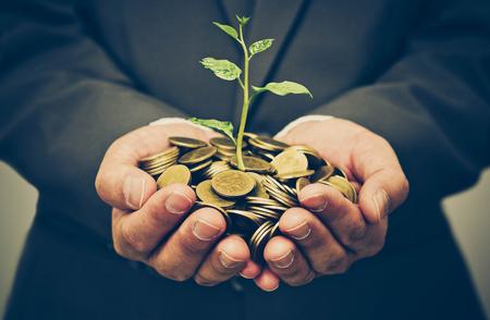 Handen van de bedrijfsmens die een boom het groeien op gouden muntstukken houdt - handelsinvesteringen met MVO-praktijk Stockfoto - 80824869