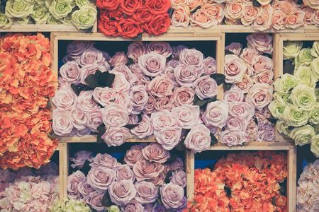 Colorful rose paper flower background