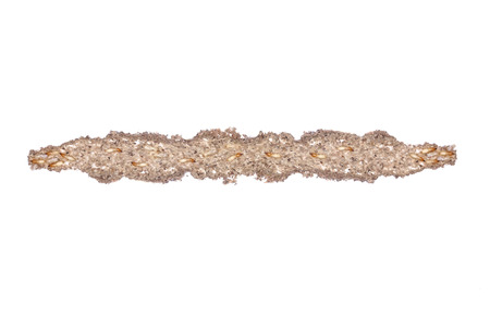 termite: Inside view of a termite nest (mud tube) isolated on white