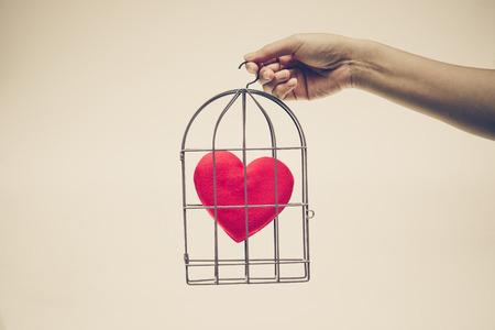 Vrouwelijke handen die een vogelkooi met een rood binnen hart houden
