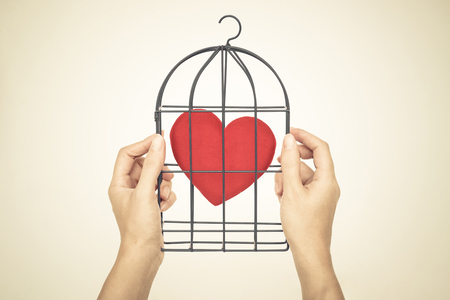 insincere: Female hands holding a bird cage with a red heart inside